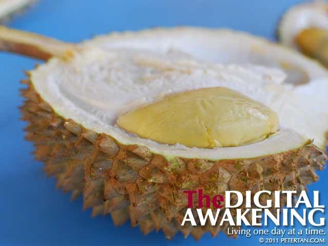 Balik Pulau durian - Tiam Teng